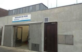 Lota de Vila do Conde abre ao fim de 6 anos