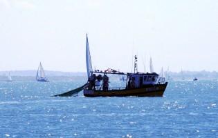 Apoio a pescadores de sardinha até dia 14 de dezembro