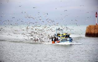 """Tribunal condena mestre do barco """"Jesus dos Navegantes"""""""
