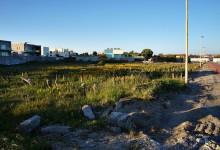 """Câmara cria passeios e estacionamento na zona da """"Seca do Bacalhau"""""""