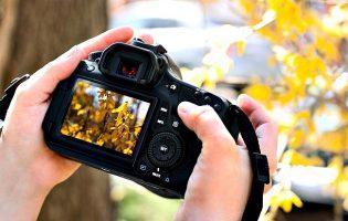 Universidade de Harvard disponibiliza curso de fotografia gratuito online