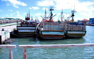 Crédito Agrícola e Pró Maior Segurança dos Homens do Mar assinam protocolo para beneficiar pescadores