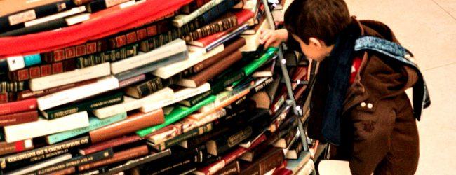 Biblioteca de Vila do Conde tem Árvore de Natal com mais de 4000 livros