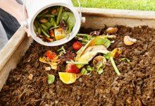 Curso de compostagem caseira gratuito no Centro de Monitorização e Interpretação Ambiental de Vila do Conde