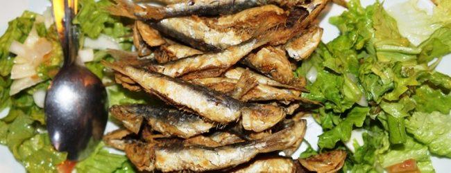 Fins de Semana Gastronómicos regressaram a Vila do Conde