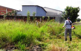 GNR começa a passar multas a 2 de abril a quem não tenha limpado terrenos