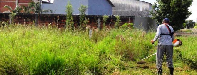 GNR vai multar quem não limpe os terrenos a partir de 1 de abril