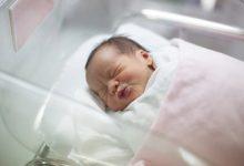 Centro Hospitalar da Póvoa de Varzim e Vila do Conde regista maior número de partos do Norte