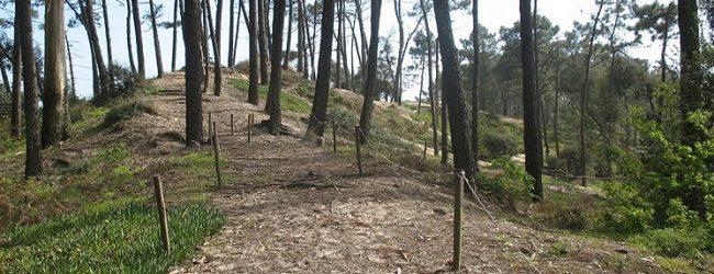 Salvem a ROM de Vila do Conde faz Caminhada pela Reserva Ornitológica de Mindelo