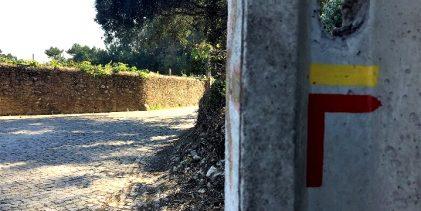Câmara de Vila do Conde inicia renovação de sinalética das Rotas Pedestres