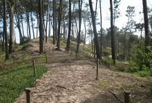 """FAPAS denuncia """"erros ambientais"""" na Reserva Ornitológica de Mindelo de Vila do Conde"""