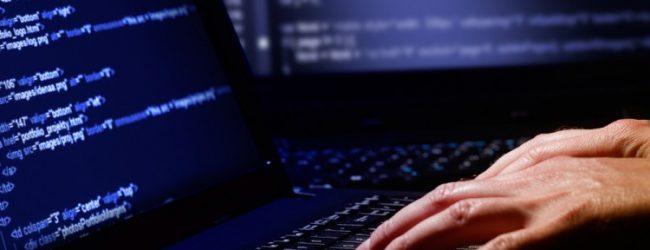 Programador(a) Web .NET – SHAMIR