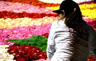 """Vila do Conde representa Portugal em Itália nos tapetes de flores """"Pietra Ligure in fiore"""""""