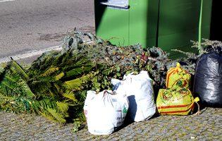 Póvoa de Varzim entra no Projeto de Recolha Selectiva de Resíduos Verdes da LIPOR