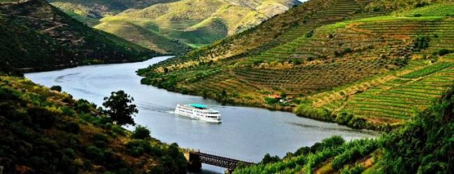 Porto e Norte de Portugal distinguido com quatro prémios nos World Travel Awards