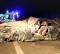 Mãe de Angélico Vieira insiste que filho guiava um carro emprestado por stand da Póvoa de Varzim