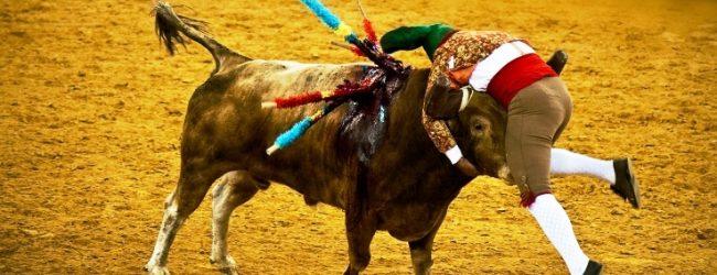 Clube Taurino da Póvoa de Varzim reagenda corrida de touros para julho de 2020