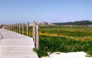Fundo ambiental avança com queixa na Comissão Europeia contra Câmara de Vila do Conde