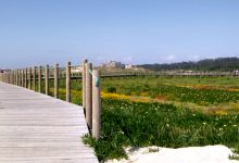 Reserva Ornitológica de Mindelo em Vila do Conde com sete novos percursos visitáveis