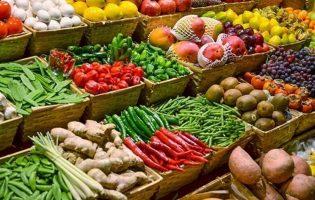 UPorto e Cooperativa de Vila do Conde em projeto que analisa toxinas em produtos agrícolas