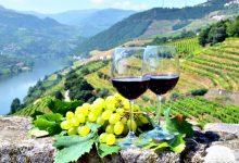 Instituto dos Vinhos do Douro e do Porto aposta em Vila do Conde nos consumidores jovens