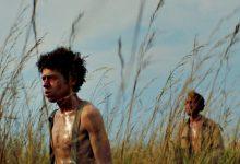 Filmes que passaram pelo Curtas de Vila do Conde presentes no Festival de Cinema de Roterdão