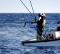 Ministro do Mar pede a Bruxelas medidas reforçadas para apoiar Pesca e Aquicultura
