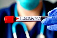 DGS diz que concelhos de Vila do Conde e da Póvoa de Varzim têm 431 casos de Covid-19