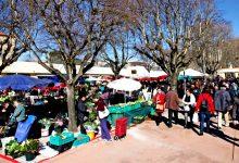 Feira de Vila do Conde reabre esta sexta feira