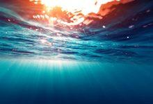 Investigadores detetam bactérias patogénicas em águas de praia balnear da Póvoa de Varzim