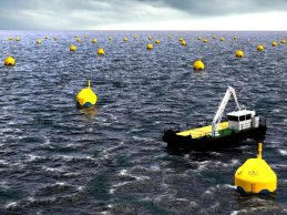 CorPower Ocean investe 16 ME para produção de energia das ondas e marés em Viana do Castelo