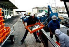 5 pescadores infetados com Covid-19 e 40 em isolamento em Vila do Conde e Póvoa de Varzim