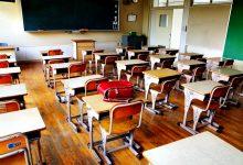 Instituto de Apoio à Criança defende disciplina de Cidadania e Desenvolvimento obrigatória