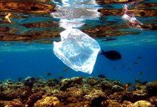 Relatório acusa empresas que usam plástico descartável de sabotar leis e iludir consumidores