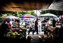 """Associação do Norte diz que suspensão de feiras e mercados será """"fatal"""" para famílias e negócios"""