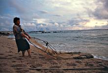 """""""A Mãe e o Mar"""" sobre as mulheres pescadeiras de Vila Chã em Vila do Conde exibido na RTP2"""