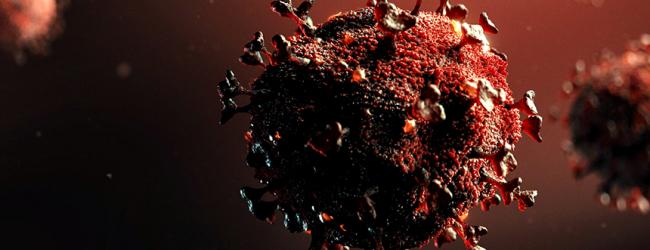 Portugal contabiliza mais 38 óbitos e 691 novos casos de infeção devido à pandemia de Covid-19