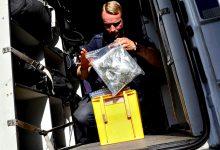 Suspeito de tráfico de droga através de uma janela em Vila do Conde fica em prisão preventiva