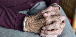 Rede de Universidades Seniores lamenta falta de apoio da Segurança Social em plena pandemia