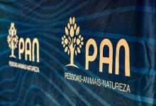 PAN foi o único partido do parlamento com as contas das autárquicas de 2017 todas corretas