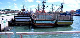 """Fisco diz que inspeções a pescadores """"envolveram menos de 1% dos operadores"""""""