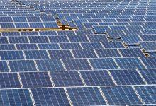 Empresa de painéis solares da Póvoa de Varzim aumentou as vendas no 1.º trimestre de 2020