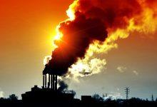 Fundo Ambiental dá meio milhão a projeto da Maia para atingir zero emissões de carbono