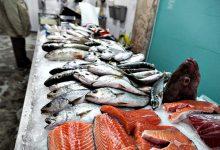 Peixeiras de Angeiras reinventam-se devido à pandemia de Covid-19 e entregam peixe em casa