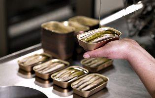 Conserveiras portuguesas apontam bazuca de 20 M€ a lata de sardinha em formato de lingote